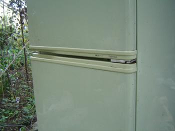 refrigerator-5.jpg